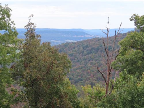 Homes With Land in Arkansas : Green Forest : Carroll County : Arkansas