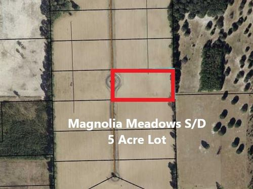 Subdivision Lot, Bell Gilchrist : Bell : Gilchrist County : Florida