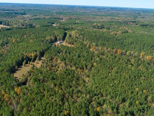 134 Acres Virginia Acres Kerr Lake : Virgilina : Halifax County : Virginia