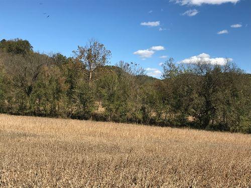 39 Acres, Cropland & Woodlands.Deer : Tompkinsville : Monroe County : Kentucky