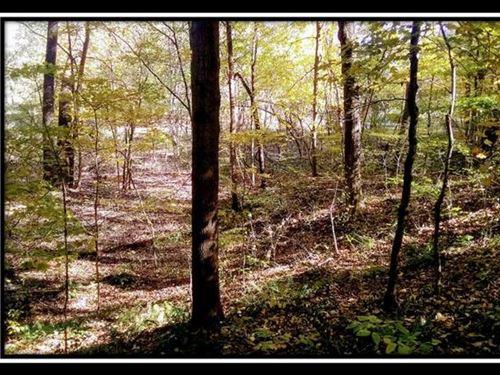 3/4 Ac Paradise : Hopewell : Licking County : Ohio