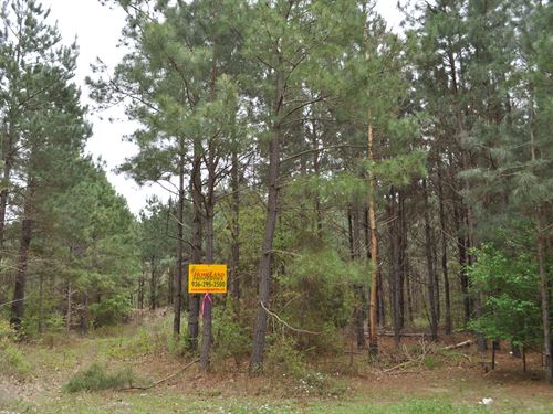 282 Acres Cr 2213 Tract 1191 : Rusk : Cherokee County : Texas