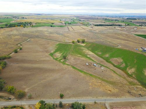 Irrigated Agricultural Grazing Land : Fruitland : Payette County : Idaho