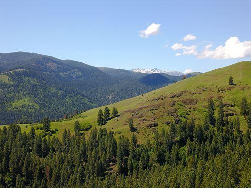 Secluded Recreational Retreat : New Meadows : Idaho County : Idaho
