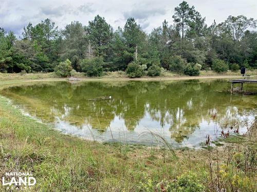 Lott Road Mini-Farm And Homesite : Citronelle : Mobile County : Alabama
