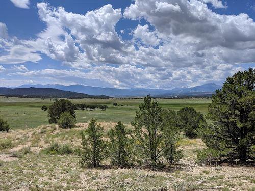 Centerville Ranch Land Chalk Cliff : Nathrop : Chaffee County : Colorado