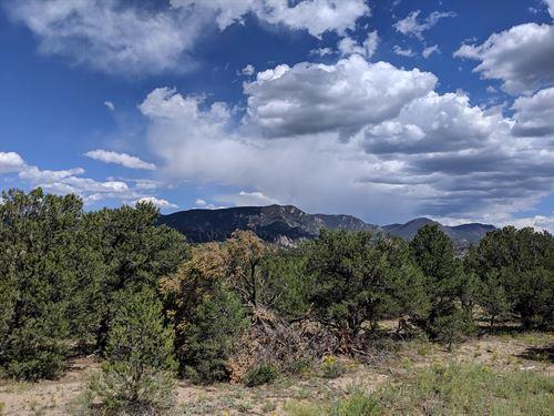 Midway Buena Vista Salida CO Land : Nathrop : Chaffee County : Colorado