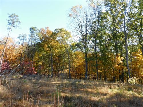 Oldtown MD Land For Sale : Oldtown : Allegany County : Maryland