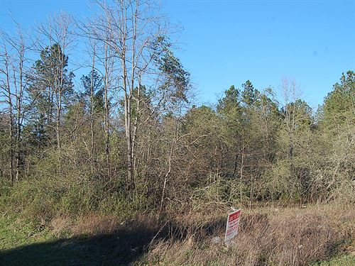 .26 Acre Lot Near Macon : Macon : Jones County : Georgia