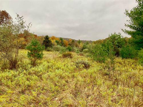45 +/- Acres Of Awesome Land : Benton : Columbia County : Pennsylvania
