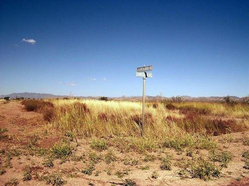 Nice Premium Lot, Power, $75 P/Mo : Douglas : Cochise County : Arizona