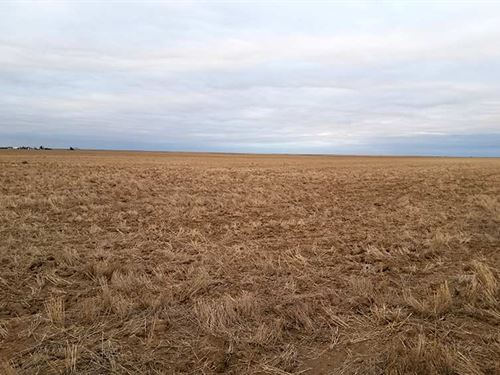 Baca County Land Auction : Springfield : Baca County : Colorado