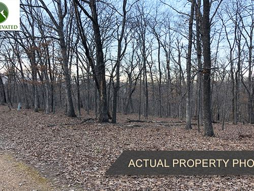 .24 Acre Lot For Sale, Lake Ozark : Lake Ozark : Camden County : Missouri