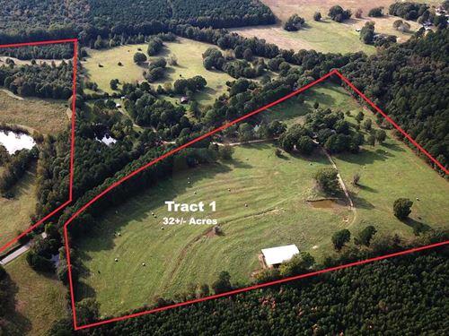 98 Acres of Pasture Land : Rison : Cleveland County : Arkansas