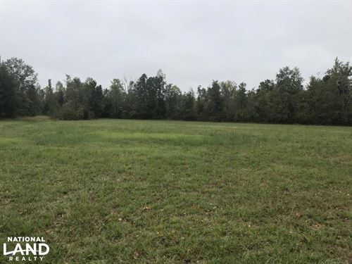 Hunting, Pasture, & Timber Opportun : Buena Vista : Chickasaw County : Mississippi