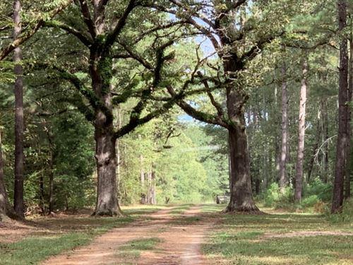 84 Acres In Rankin County In Morton : Morton : Rankin County : Mississippi