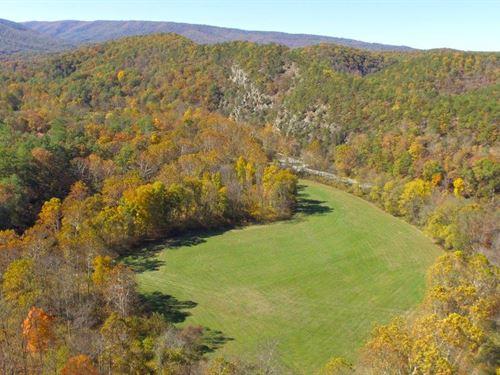 Magnificent 24.17 Acres : Covington : Alleghany County : Virginia
