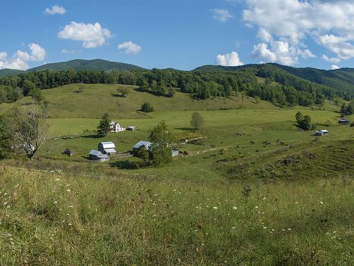 Mountain Farm, Endless Options : Marion : Smyth County : Virginia