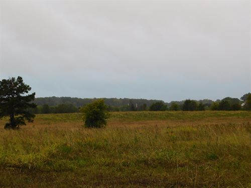 Vacant Land, Open Pasture : Pike Road : Montgomery County : Alabama