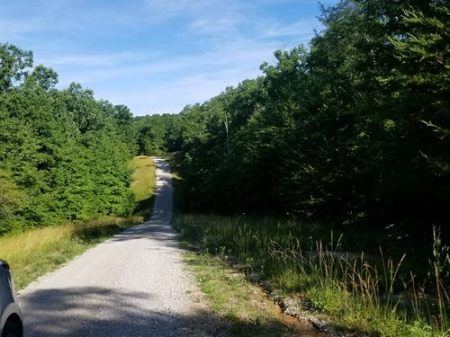 Beautiful Lot With Privacy : Altamont : Grundy County : Tennessee
