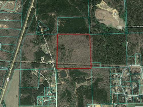 40 Acres Of Vacant Land : Centerville : Bibb County : Alabama