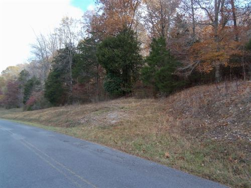 Partially Wooded And Pasture Land : Wartrace : Bedford County : Tennessee