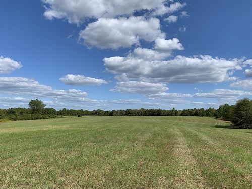 Cherry Creek Farm : Maplesville : Chilton County : Alabama