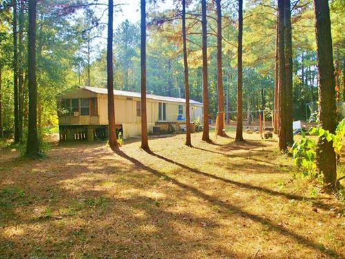 2 Mobile Homes, Metal Shop, 4.86 Ac : McComb : Pike County : Mississippi