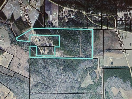 Nice Land Hosford FL River Forest : Hosford : Liberty County : Florida