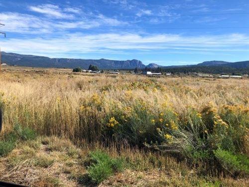 Land For Sale Tierra Amarilla NM : Tierra Amarilla : Rio Arriba County : New Mexico