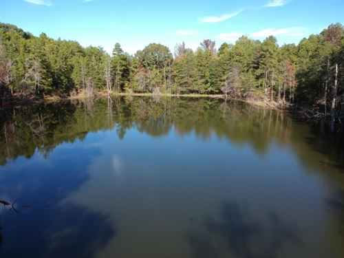 43 Acres, Union County, SC : Jonesville : Union County : South Carolina