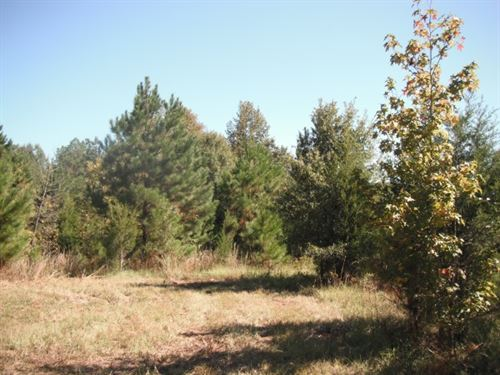 31 Acres, Chester County, SC : Richburg : Chester County : South Carolina