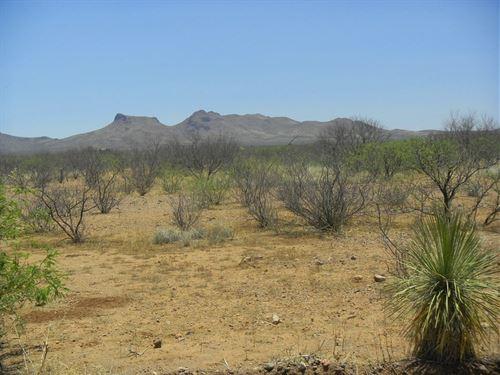 Excellent Mobile Home Lot, $75 P/Mo : Douglas : Cochise County : Arizona