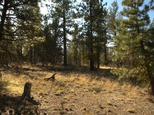 Trees, No Neighbors, $165/Month : Bonanza : Klamath County : Oregon