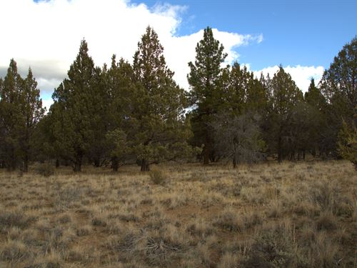 Affordable Lot, $135/Month : Beatty : Klamath County : Oregon