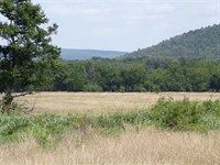 Recreational Acreage Near McGee Cr : Daisy : Atoka County : Oklahoma