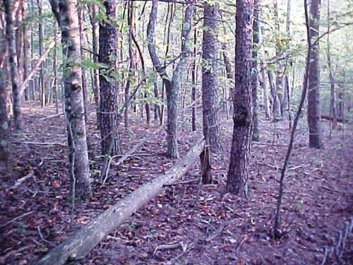 1.2 Acres Land Located Henry : Bassett : Henry County : Virginia