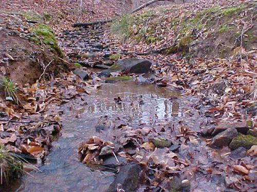 34.56 Acres Land Sell Henry County : Bassett : Henry County : Virginia