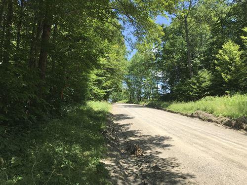 Bordering Whaupaunaucau State Fores : North Norwich : Chenango County : New York