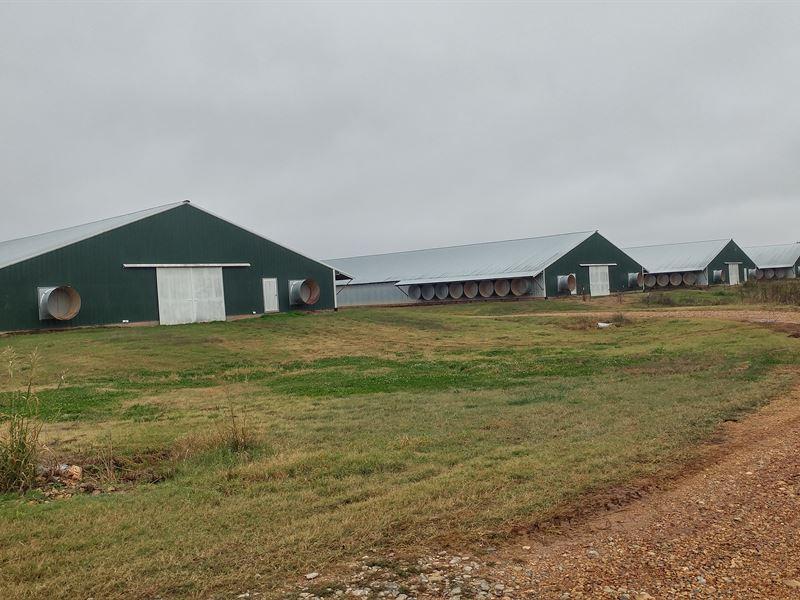Mega House Broiler Farm Nw Arkansas : Decatur : Benton County : Arkansas