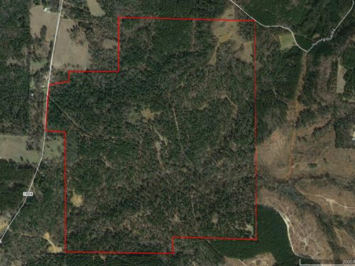 Excellent 398.475 Acres : Jacksonville : Cherokee County : Texas