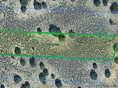 1.27 Acres in Apache County AZ : Sanders : Apache County : Arizona