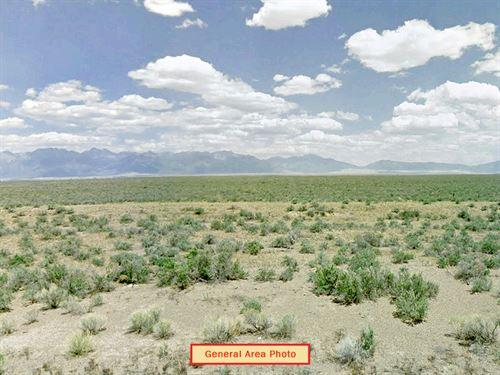 3.6 Acre Lot Near Alamosa : Center : Saguache County : Colorado