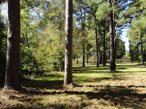 Rural East Texas Recreational : Rusk : Cherokee County : Texas
