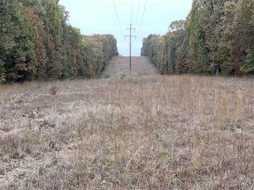 60 Acres of Good Hunting Ground : Lowry City : Saint Clair County : Missouri