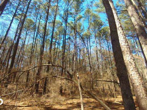 5 Acre Residential Property in Bent : Benton : Saline County : Arkansas