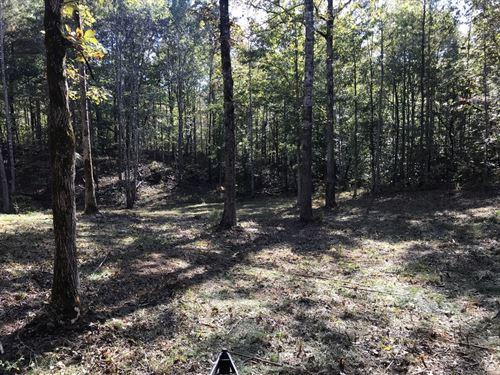 Brand Tract : Verbena : Chilton County : Alabama