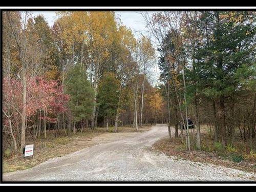 Beautiful Wooded Estate Home Site : Sunbury : Delaware County : Ohio