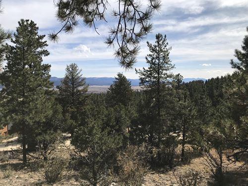 3078502, Spectacular Views : Buena Vista : Chaffee County : Colorado