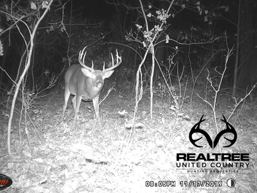 Timber Investment And Great Hunting : New Plymouth : Vinton County : Ohio
